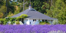 gatehouse_farm_store_pelindaba
